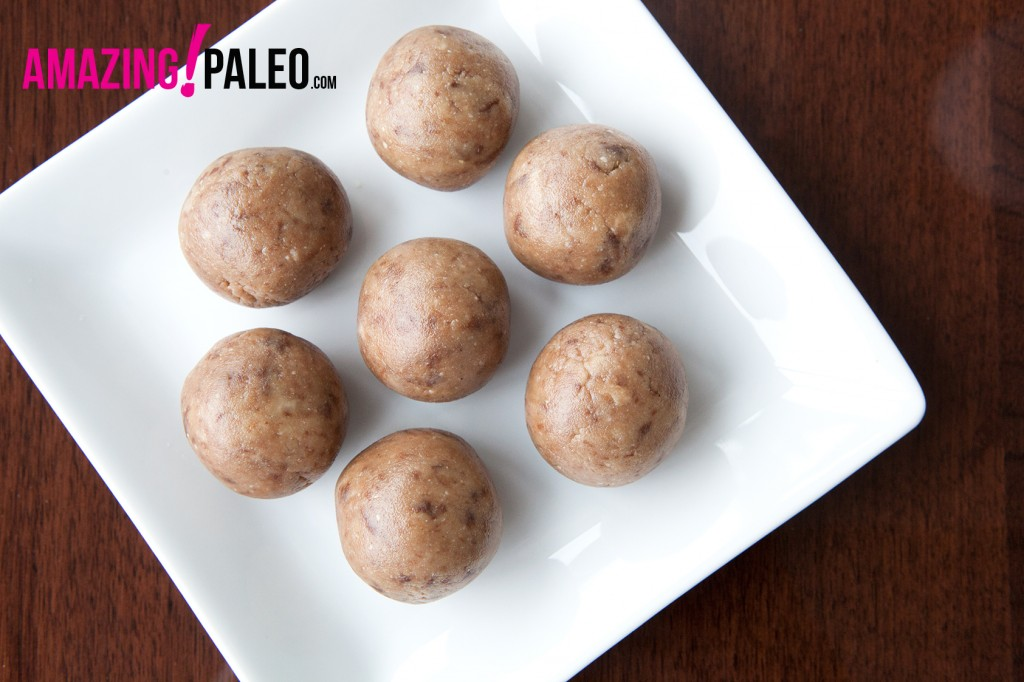Paleo Power Balls - a No-Bake Treat. Easy and delicious recipe!